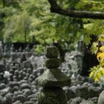 2010秋-京都・神戸の旅(嵐山~龍安寺~金閣寺)